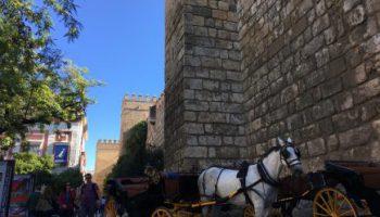 スペイン旅行6日目 セビリアのアイキャッチ画像